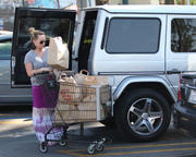 http://img289.imagevenue.com/loc32/th_304894965_Hilary_Duff_Shopping_at_Ralphs_market17_122_32lo.jpg