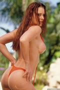 free gallery download