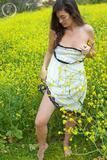 Claire Flowers517e9lhjmj.jpg